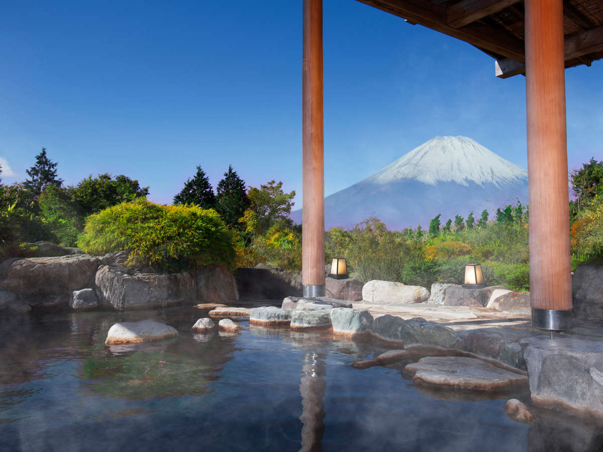 Hotel Green Plaza Hakone | SELECTED ONSEN RYOKAN | best in japan ...