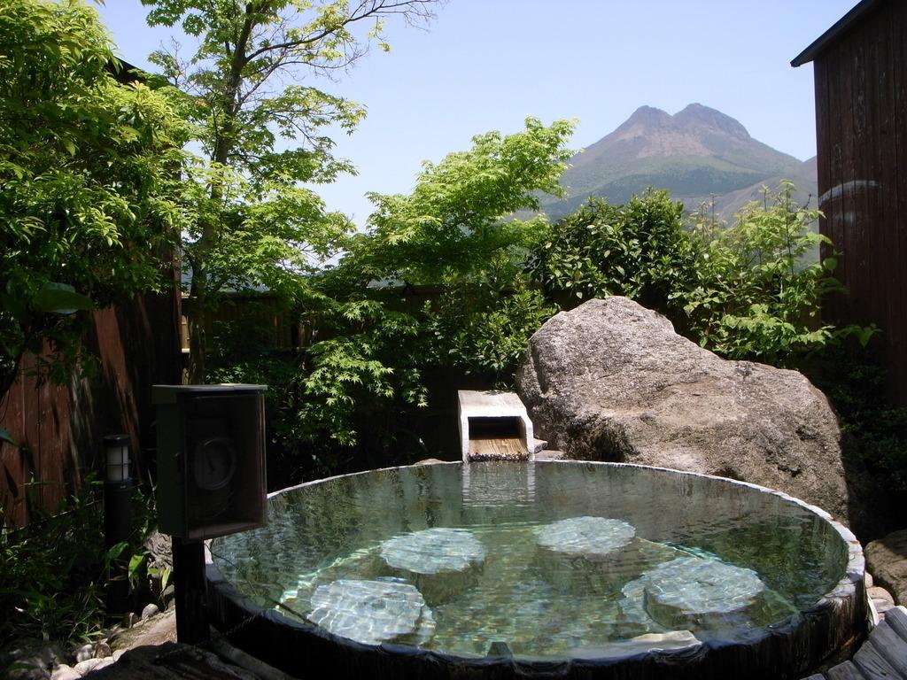 Kasuga Ryokan Hotel - room photo 8576128